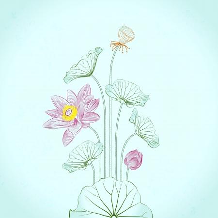 flores chinas: Lotus Pintura, dibujo en tinta tradicional y el estilo de pincel