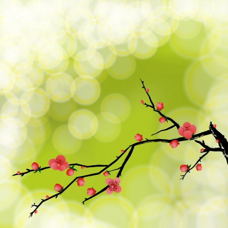 Wintersweet, Winter flower on background, Light nature background with Place for your text  Vector