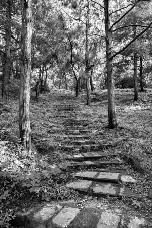 Stone staircase leading up a walkway photo