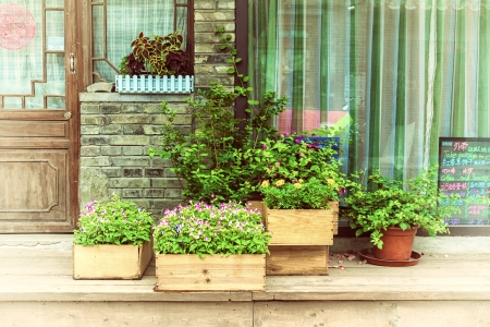planter: Flowers in wooden pot at the store entrance