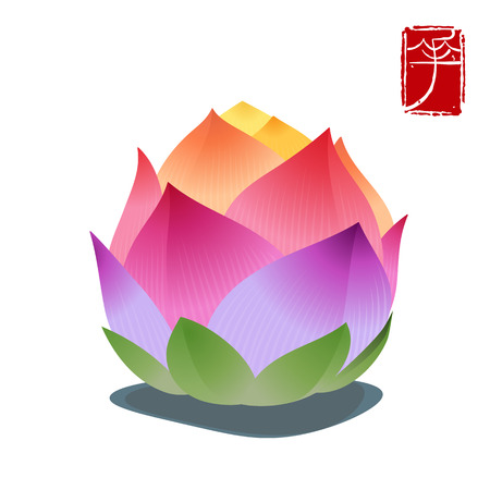 Colorful lotus flower isolated on white background, seal means: flower. Vector