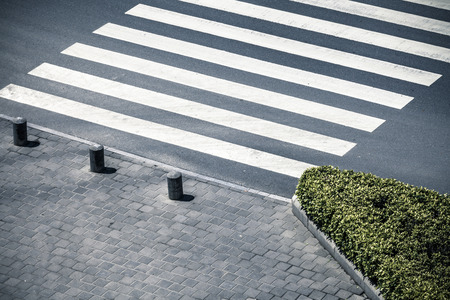 crosswalk: Zebra crossing by top view