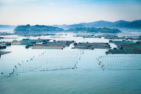 Seafood fish farming, Fishery on sea, Fujian, China.