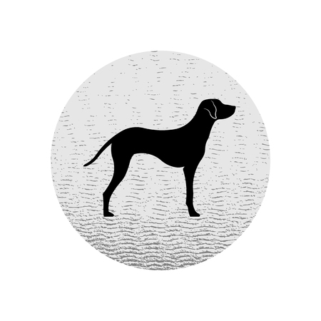 black silhouette of Dalmatian purebred dog by side view.