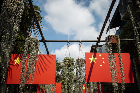 Chinese flag and plant under blue Sky.