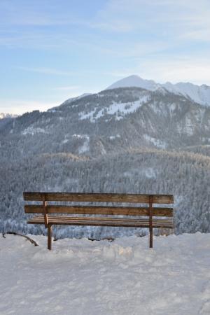 Bench on winter walk
