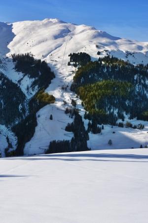 Ski area with toboggan