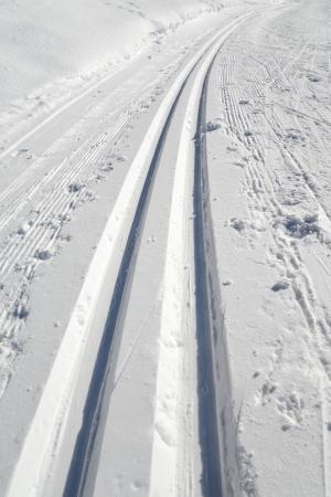Fresh trails track