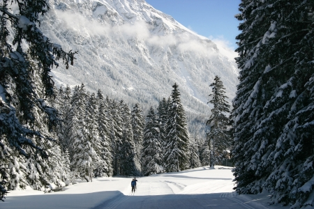 Cross-country skiing in the Alps Stock Photo