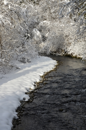 Creek with snow on the shore Stock Photo