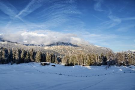 snowy alpine meadow Stock Photo