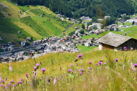 Mountain meadow above Vals, Grisons Stock Photo