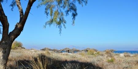 Umbrellas behind dune on Mediterranean