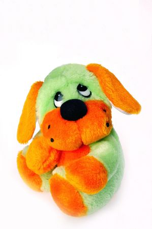 A lovely toy dog is on white background Stock Photo - 6260434