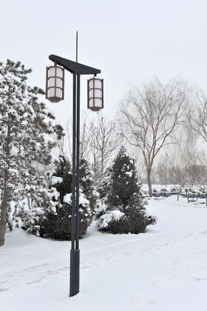 lampost: A picture of trees and a light in ths snow  Stock Photo