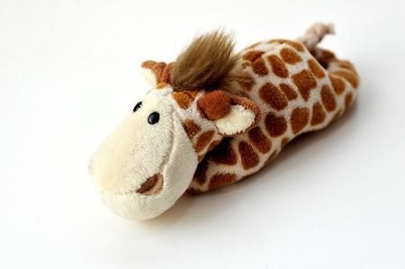 Toy giraffe on a white background