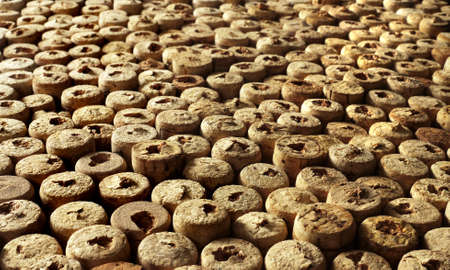 many wine corks from bottles as a background photo