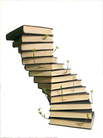 cognicion: pila de libros como el tronco y los brotes de las plantas como los brotes de conocimiento