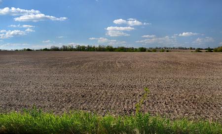 black soil: plowed field on the black soil under the blue sky