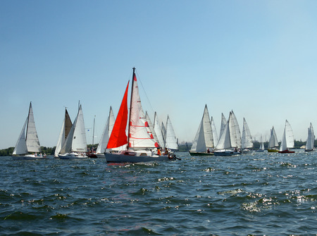 lots of sailboats on a blue surface of water and one red sail