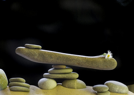 stone scales with  pebbles and flower on the dark background