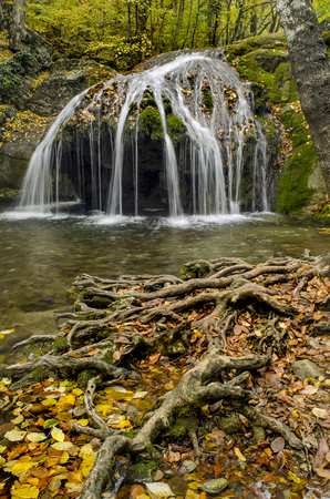 a small waterfall with thin streams in an autumn forest tree roots in the foreground