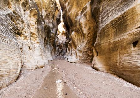 willis: Willis Creek Canyon Utah