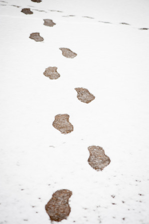 Footprint path in winter snow