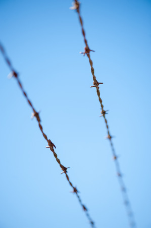 texture of barbed wire against blue sky