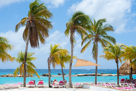 palm trees and beach chairs on white sand with blue sky and white clouds