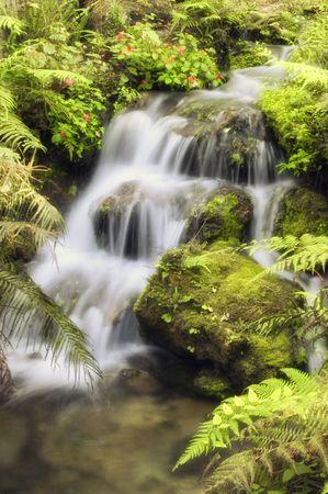 ultimate: Natural Spring Waterfall