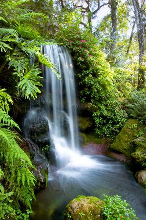 天然温泉滝
