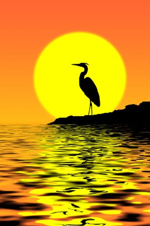 Blue Heron Sunset