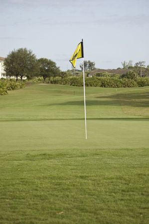 Yellow Flag on the Green