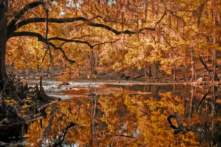 Red Autumn River photo