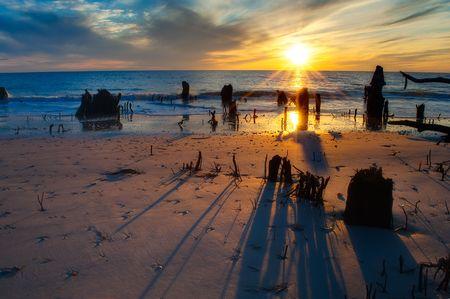 Setting Sun and Long Shadows Stok Fotoğraf