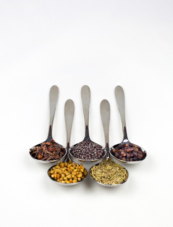 indian spices: Spoons full of typical Indian spices used in making curry Stock Photo