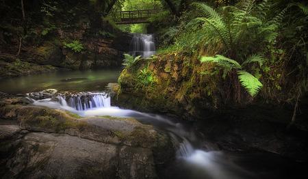 Sgydau Sychryd cascade, The Sychryd Cascades, a set of waterfalls near the Dinas Rock, Pontneddfechan, South Wales, UK
