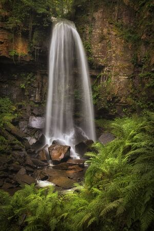 Waterfall and ferns at Melincourt The power of the waterfall at Melincourt Brook in Resolven, South Wales, UK