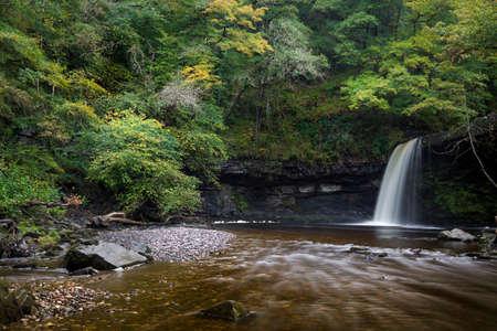 Autumn approaches on the waterfall known as Lady Falls or Sgwd Gwladus on the river Afon Pyrddin near Pontneddfechan, South Wales, UK 免版税图像