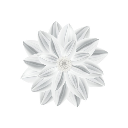 and technique: White paper flower in origami technique isolated on a white background. Vector illustration Illustration