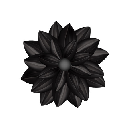 Black flower in gothic style isolated on a white background. Illustration