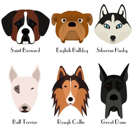 Set of 6 dogs head. Flat design. Pets. Cute doggies. Dog icon.  Cartoon character. Animals.