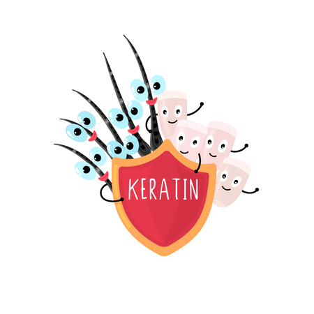 Happy nails and hair peeking out from under the red shield that says Keratin. Beauty and care. Hand drawn cute cartoon design. Lettering. Advertising, banner, poster, brochure. Vector, eps10 Illustration