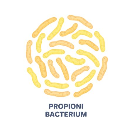Vector probiotics in circular shape. Propionibacterium. Microbiome. Medicine or dietary supplement. Brochure, flyer, label, cover, poster, banner, package, advertising, presentation. Yellow colors
