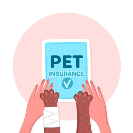 Pet insurance. Paws of brown cat with bandage and woman hands together. Blue document with check mark. Damage to cat. Caring for animal. Poster, banner, brochure, flyer. Vector illustration, eps10 Ilustração