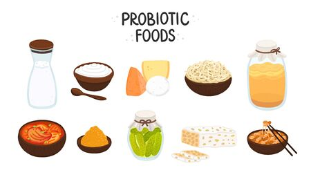 Vector probiotic foods. Best sources of probiotics. Beneficial bacteria improve health. Isolated elements is for label, brochure, menu, advertising, article about diets, healthy and proper nutrition