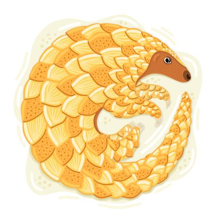 Indian pangolin. Cute animal has scales on body. Endangered species. Character design. This can be used for postcard, cover, invitation and flyer to the zoo, printing on clothes. Vector illustration Ilustrace