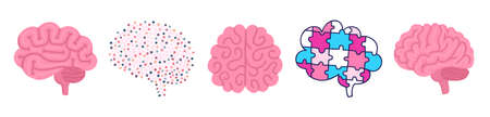 Set of vector brains. Illustrations for label of medicine, advertisement poster or banner for psychologist or department of neurology, design for website or article about mental health or neuroscience