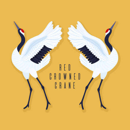 Pair of red crowned cranes and heart. Yellow background with dancing East Asian birds. Endangered species. Card, print on t-shirt and other apparel, cover, banner, poster, label. Vector illustration Ilustracja